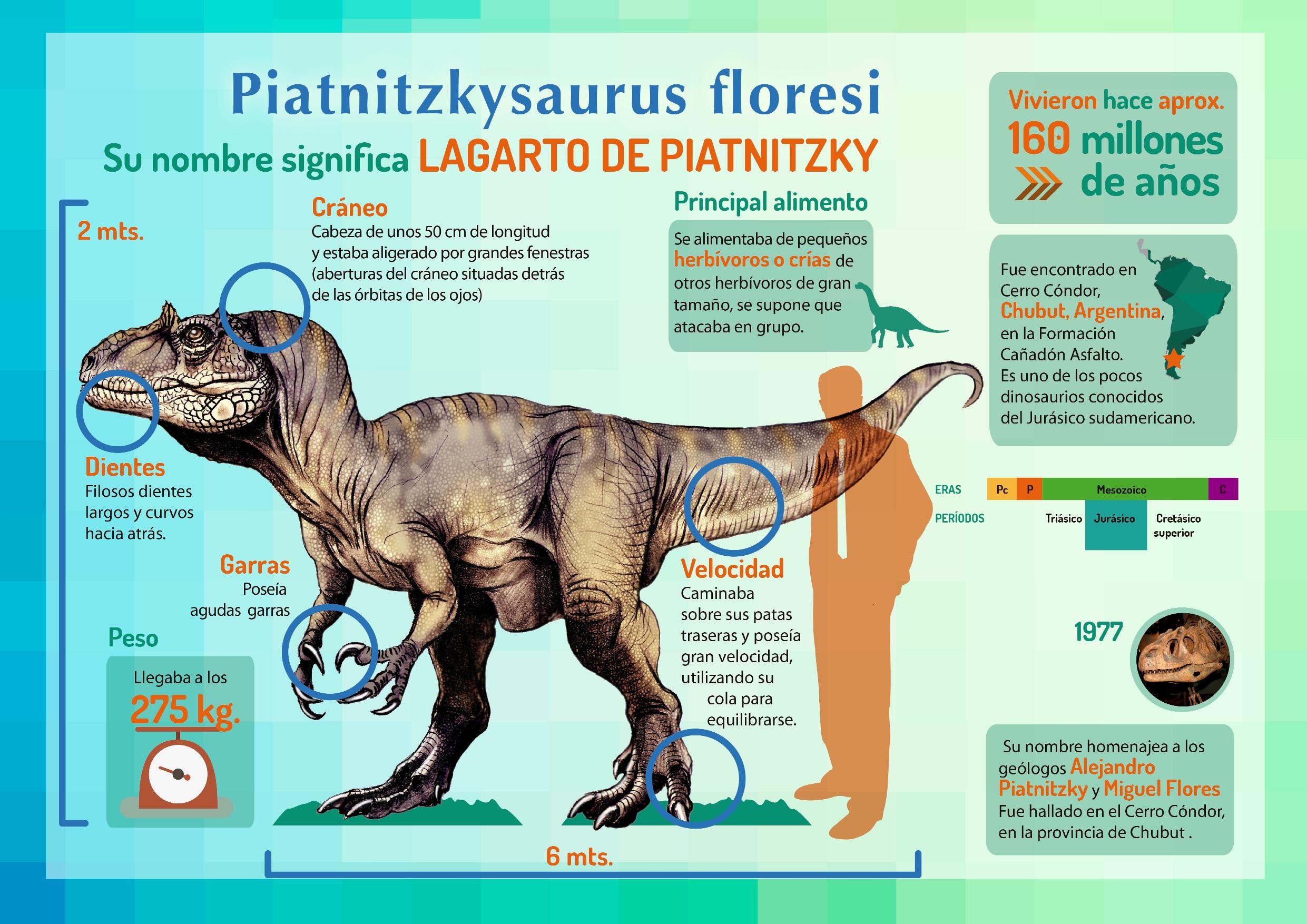 Piatniskysaurus floresi